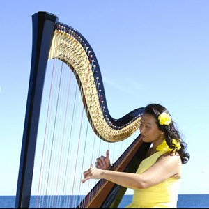 Divide Harpist | Sarah Thompson