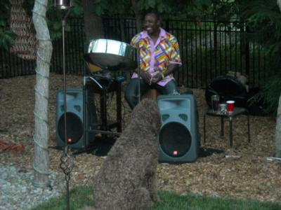 Sterling C Sample's Island Music Steel drums LLC | East Orange, NJ | Steel Drum | Photo #23