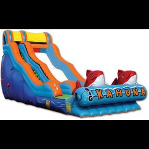 Kingwood Party Inflatables | Lets Have A Party!
