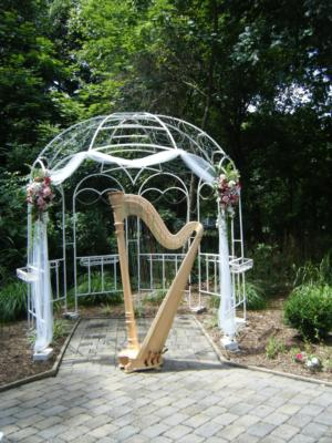 Melissa Tardiff Dvorak Harpist | Falls Church, VA | Classical Harp | Photo #8
