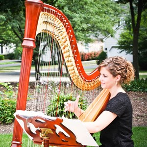 Illinois Harpist | Brittany Smith