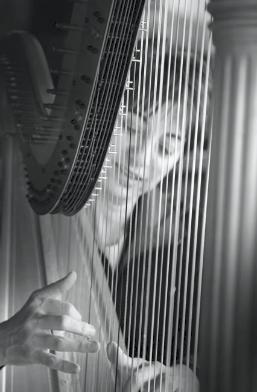 Donna Germano | Asheville, NC | Harp | Photo #5