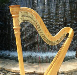 Donna Germano | Asheville, NC | Harp | Photo #7
