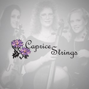 Apache Acoustic Trio | Caprice Strings
