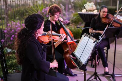 Caprice Strings | San Diego, CA | String Quartet | Photo #11