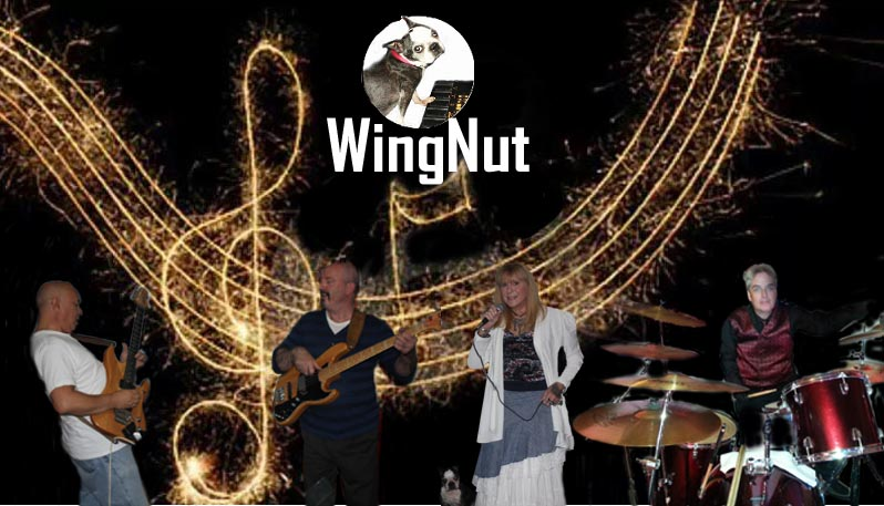 WingNut - Classic Rock Band - Grain Valley, MO