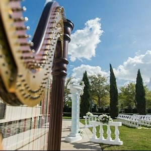 Richmond, VA Classical Harpist | Shelley Greene, Harpist