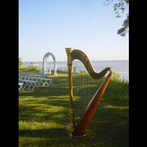 Norfolk Harpist | Shelley Greene, Harpist