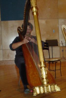 Shelley Greene, Harpist | Richmond, VA | Classical Harp | Photo #13