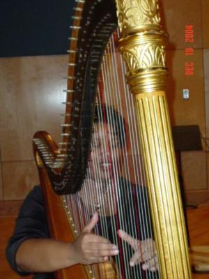 Shelley Greene, Harpist | Richmond, VA | Classical Harp | Photo #10
