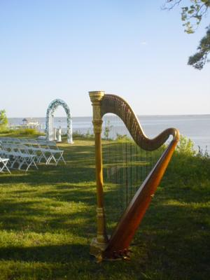 Shelley Greene, Harpist | Richmond, VA | Classical Harp | Photo #1