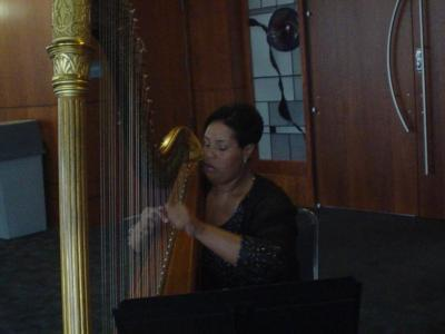 Shelley Greene, Harpist | Richmond, VA | Classical Harp | Photo #4