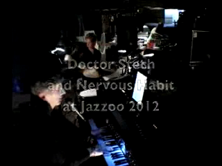 Michael Stechison / Doctor Stech & Nervous Habit | Atlanta, GA | Jazz Trio | Doctor Stech and Nervous Habit at Jazzoo Zoo Atlanta Oct 2012