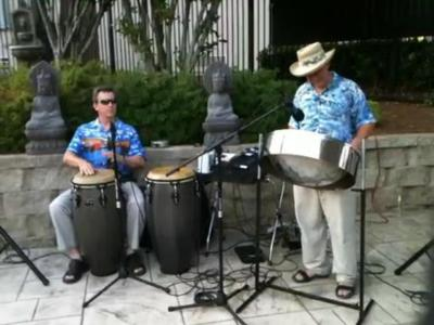 Latitude Adjustment Steel Band | Atlanta, GA | Steel Drum Band | Photo #3