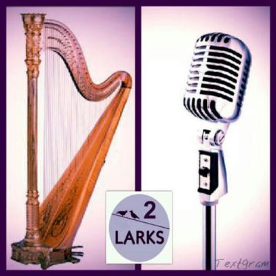 Candace Lark | East Norriton, PA | Harp | Photo #13