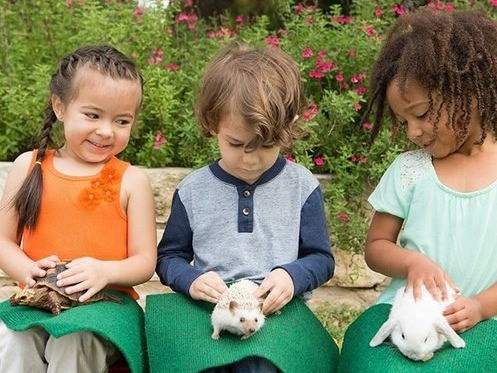 Annie's Menagerie: We bring the ZOO to YOU! - Petting Zoo - Wilmington, DE