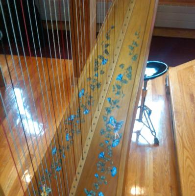 Dominique Boyle | Morristown, NJ | Classical Harp | Photo #8