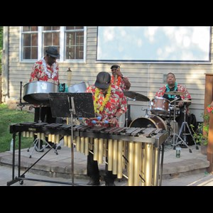 Nottingham Jazz Trio | Something Different -  Steel Drum Jazz Duo or Trio
