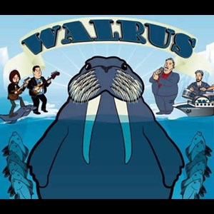 North Carolina Disco Band | Walrus