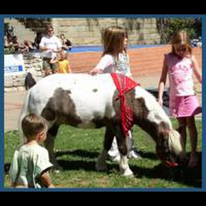 The Tiny Trotters- Pony Rides And Petting Zoo - Animal For A Party - Los Osos, CA