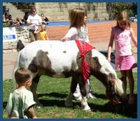 The Tiny Trotters- Pony Rides And Petting Zoo | Los Osos, CA | Animals For Parties | Photo #1