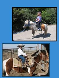 The Tiny Trotters- Pony Rides And Petting Zoo | Los Osos, CA | Animals For Parties | Photo #10