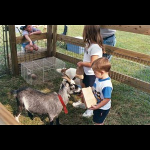 Hartwell, GA Animal For A Party | Sam's Path Petting Zoo