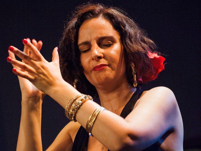 Rebeca Vallejo - Flamenco Singer - Jersey City, NJ