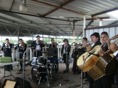 Mariachi Calmecac | Houston, TX | Mariachi Band | Photo #12