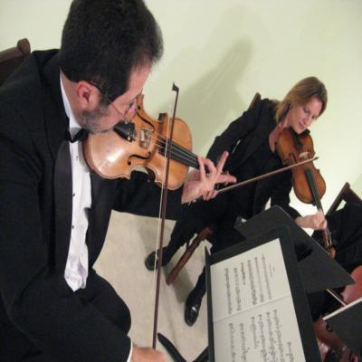 Georgia String Ensemble | Gainesville, GA | String Quartet | Photo #7