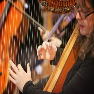South Dos Palos Cellist | Lara Garner, harpist/pianist/flautist