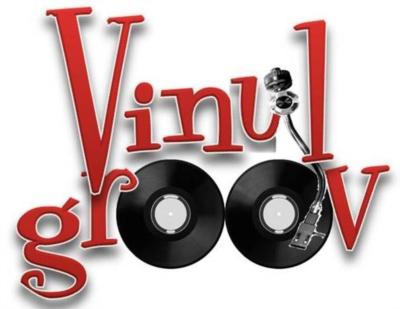 Vinyl  Groov | Harrisburg, PA | Dance Band | Photo #8