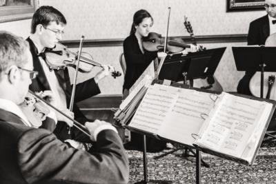 SUMMIT Strings | Boone, NC | Classical String Quartet | Photo #19