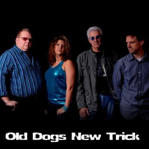 Old Dogs New Trick - Blues Band - Madison, WI