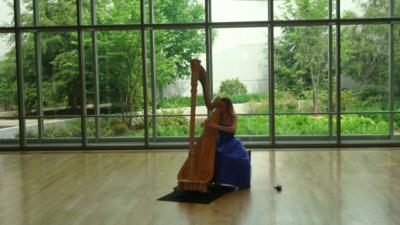Marissa Knaub | Sewickley, PA | Classical Harp | Photo #2