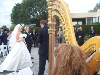 Violetta Norrie | Montclair, NJ | Classical Harp | Photo #23