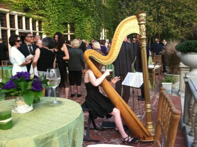 Violetta Norrie | Montclair, NJ | Classical Harp | Photo #4