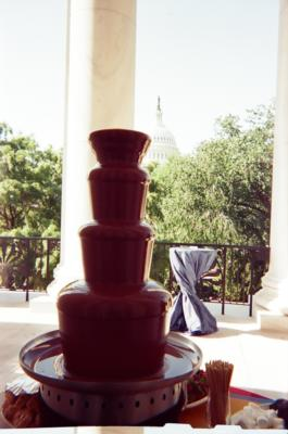 The Chocolate Chick | Herndon, VA | Chocolate Fountains | Photo #8