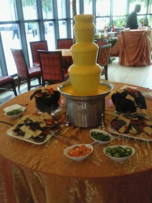 The Chocolate Chick | Herndon, VA | Chocolate Fountains | Photo #14