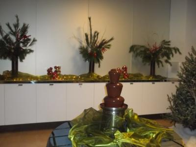 The Chocolate Chick | Herndon, VA | Chocolate Fountains | Photo #13