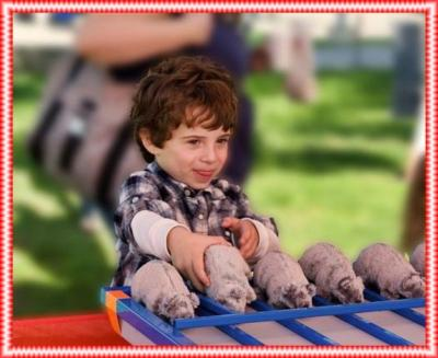 A #  1 Best  Events & Entertainment Carnival Games | Los Angeles, CA | Carnival Games | Photo #16