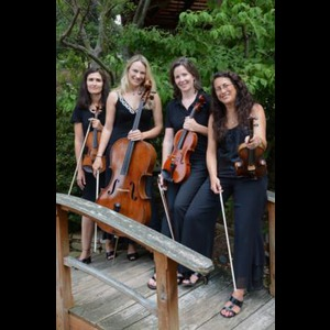 Cisco Classical Quartet | Lark Chamber Music