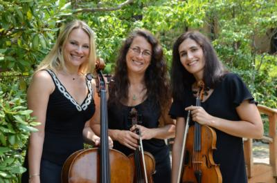 Lark Chamber Music | Kennesaw, GA | String Quartet | Photo #4