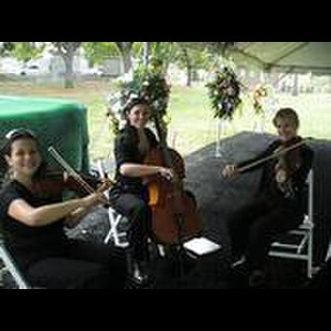 Harrison Chamber Music Quartet | New Orleans Classical & Jazz