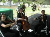 New Orleans Classical & Jazz | New Orleans, LA | String Quartet | Photo #1