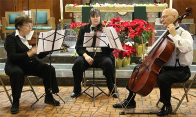Stack Strings | Brooklyn, NY | Classical Trio | Photo #4