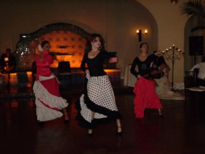 Viva Flamenco Dance Theater | Tarzana, CA | Flamenco Dancer | Photo #2