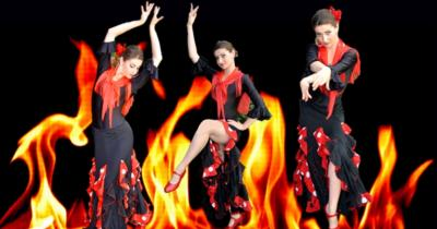 Viva Flamenco Dance Theater | Tarzana, CA | Flamenco Dancer | Photo #6