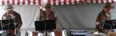 Tropical Sands Steel Band | Bridgeville, PA | Steel Drum Band | Photo #4