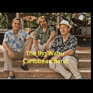 Camden Caribbean Band | Big Wahu Caribbean Band